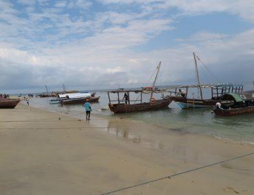 Zanzibar - ZANZİBAR.jpg