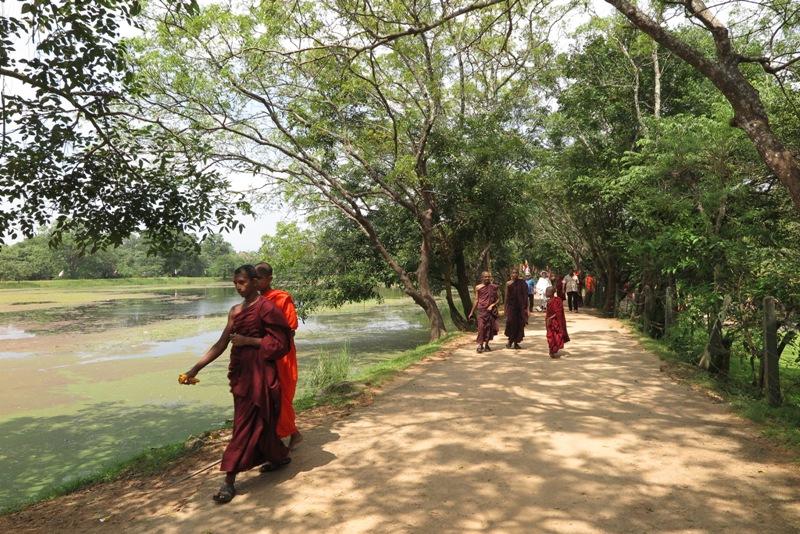 srilanka - 28.jpg