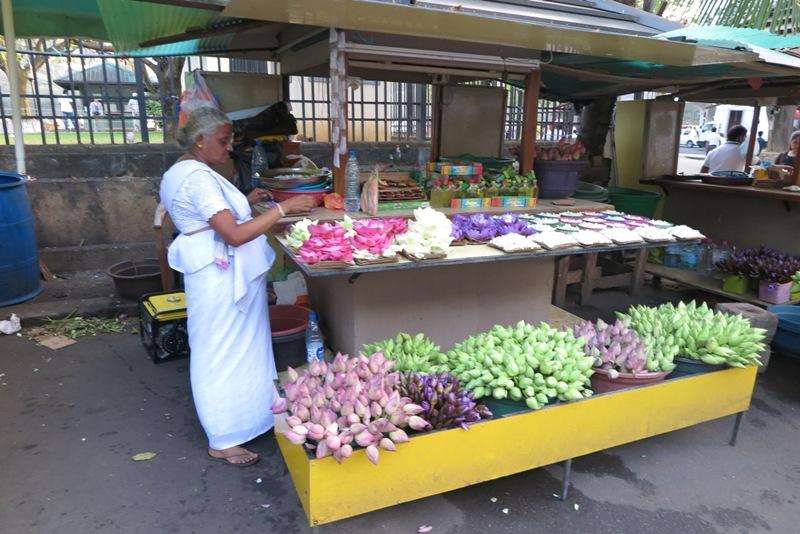 srilanka - 32.jpg