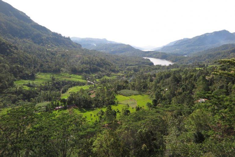 HİNT OKYANUSU'NDA YEMYEŞİL BİR ADA : SRİ LANKA – Ocak 2016
