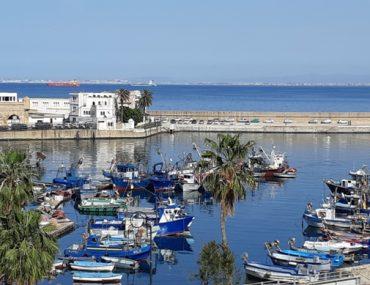 Cezayir - Başkent-Cezayir-Kapak.jpg
