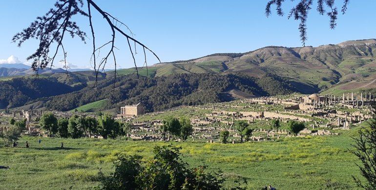 Cezayir - Djemila-Kapak.jpg