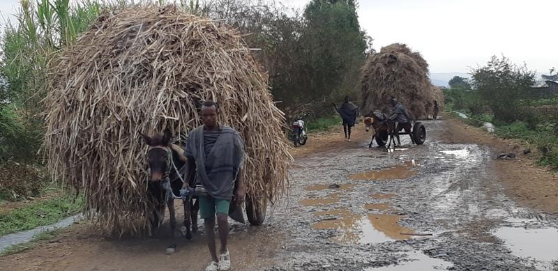 etiyopya - 10-Bahir-Dar