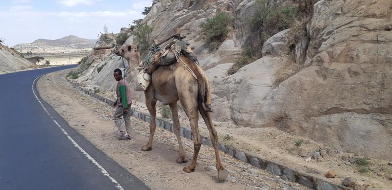 etiyopya - 25-Aksum